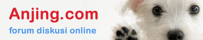 Anjing.com : forum diskusi anjing